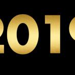 Godišnji izveštaj sa mišljenjem revizora za 2019